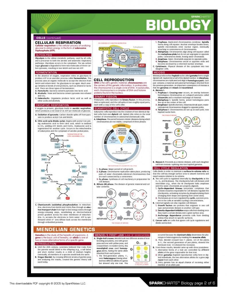 SC-Biology-2 Respiration & Genetics