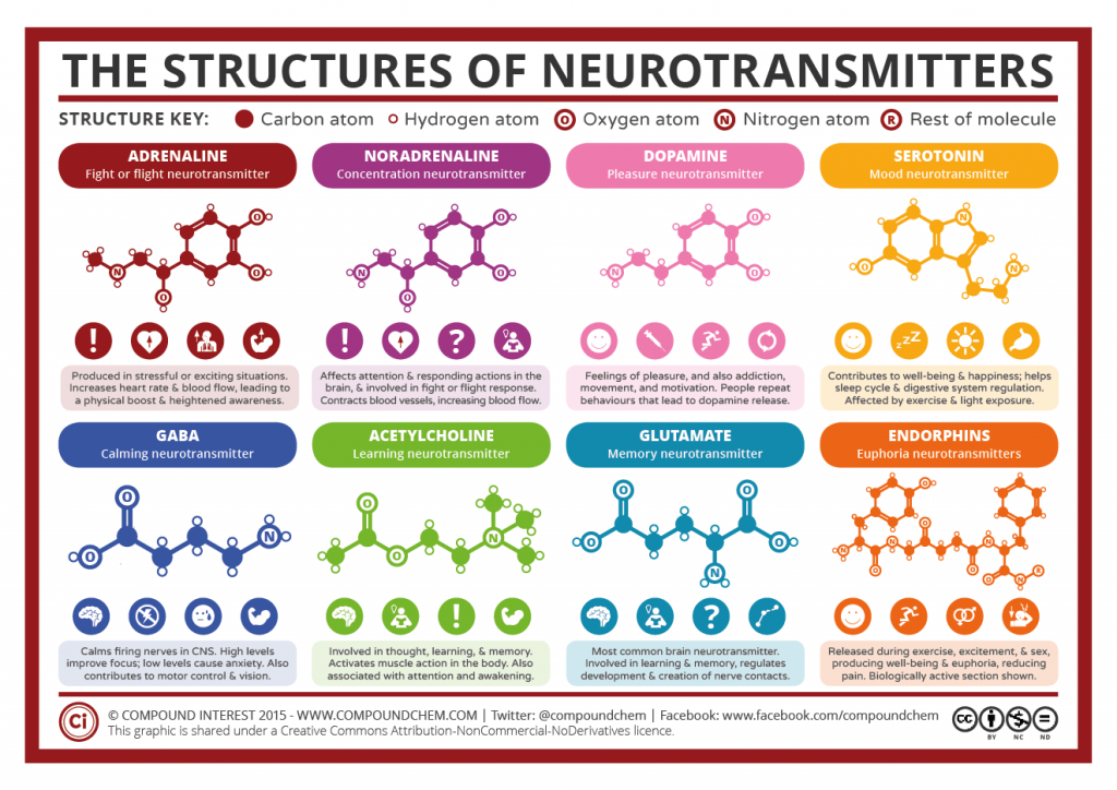 Chemical-Structures-of-Neurotransmitters-2015